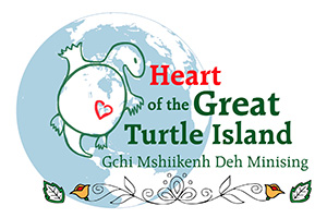 A turtle body is drawn over North and Central American, and Greenland on a globe. The heart is over Michigan.